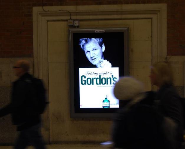 gordons-d6